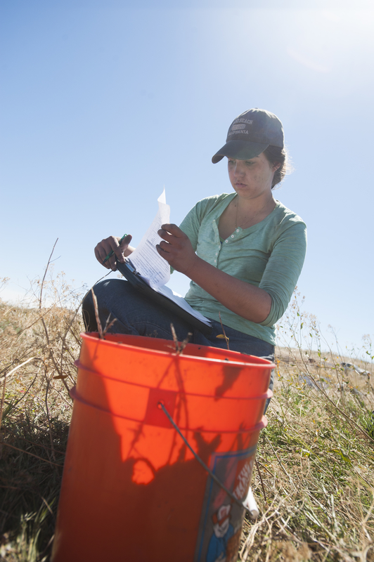 Photo: student reviewing papers on clipboard at dig