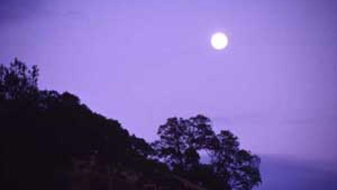 Photo of moon over oak-covered hillside