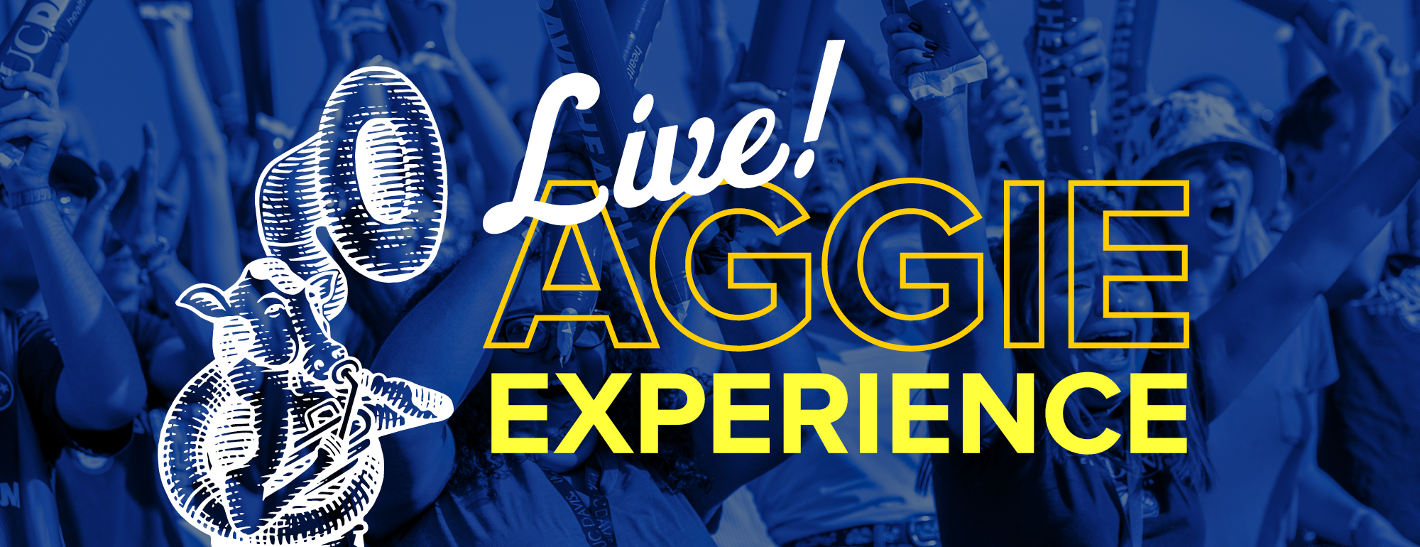 Aggie Experience Live