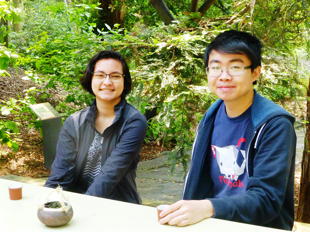 Students in a Global Tea Seminar at UC Davis
