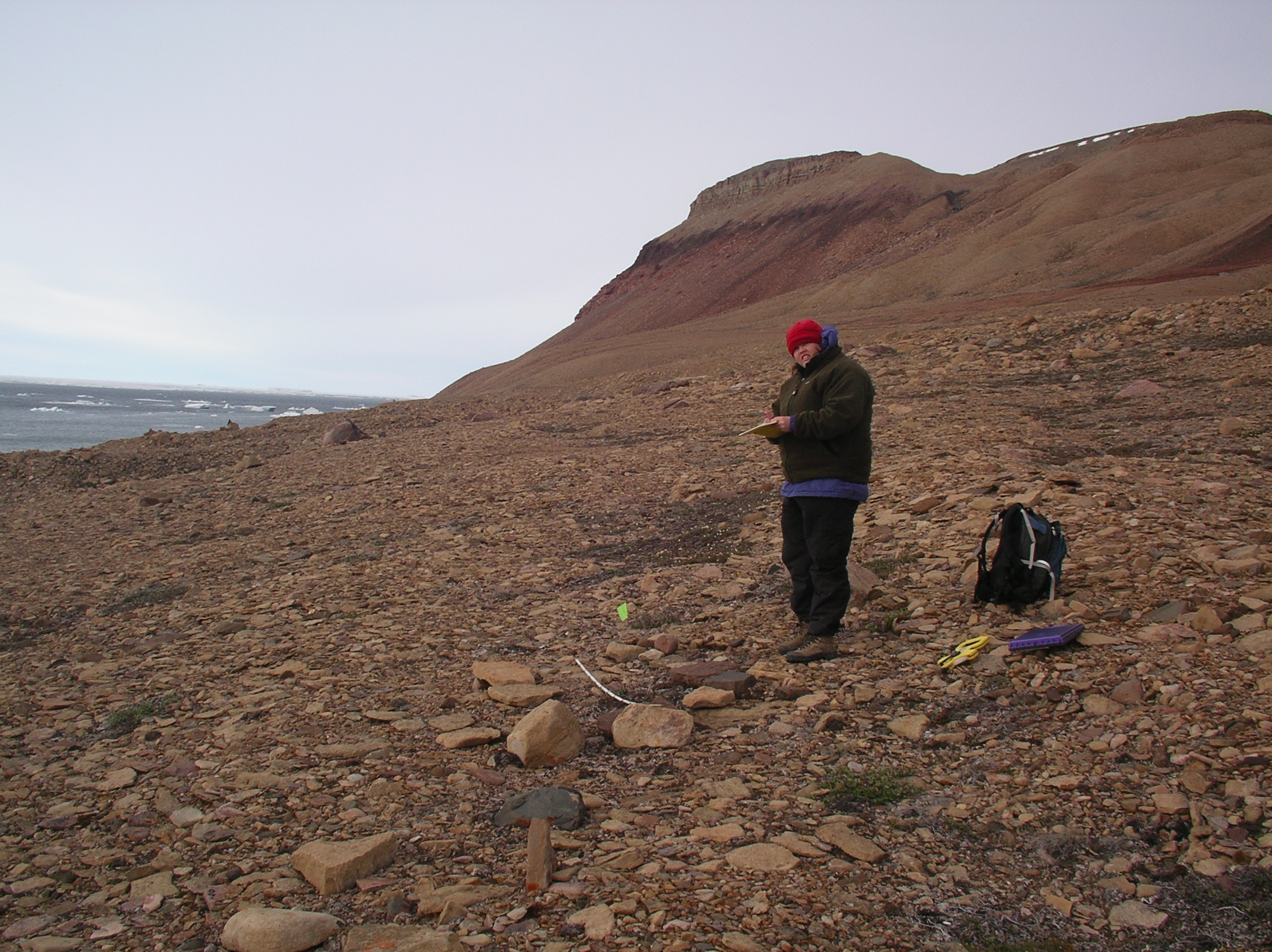 Photo: UC Davis archaeologist Christyann Darwent standing with clipboard in a baren, rocky landscape