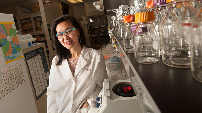 Becky Fu, a 2012 graduate of UC Davis, credits undergraduate research with helping her get into Stanford University, where she is completing doctoral studies in genetics. (Gregory Urquiaga/UC Davis)