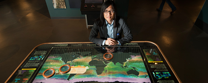 Graduate students can work on creative projects, such as this one created by Kwan-Liu Ma, a UC Davis professor of computer science. Featured in a science museum collaboration, Ma's World Plankton Populations table that shows visitors small creatures and facts about them. (Gregory Urquiaga/UC Davis)