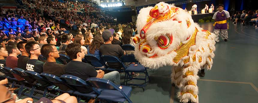 Joining the UC Davis Golden Turtle Lion Dance Association may be a lot of fun, but health-profession schools are far more interested in your GPA. (Gregory Urquiaga/UC Davis)