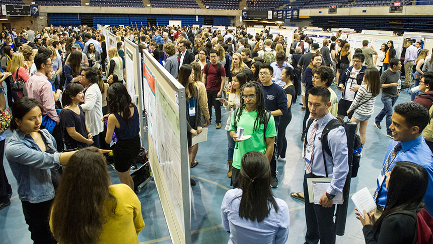 Students discuss their research at a poster session at the Undergraduate Research, Scholarship and Creative Activities Conference at UC Davis. (Jason Spyres/UC Davis)