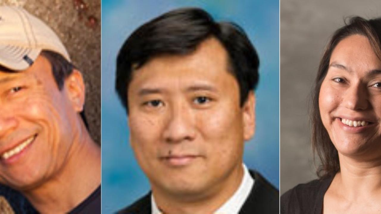 2018 AAAS fellows in the College of Letters and Science