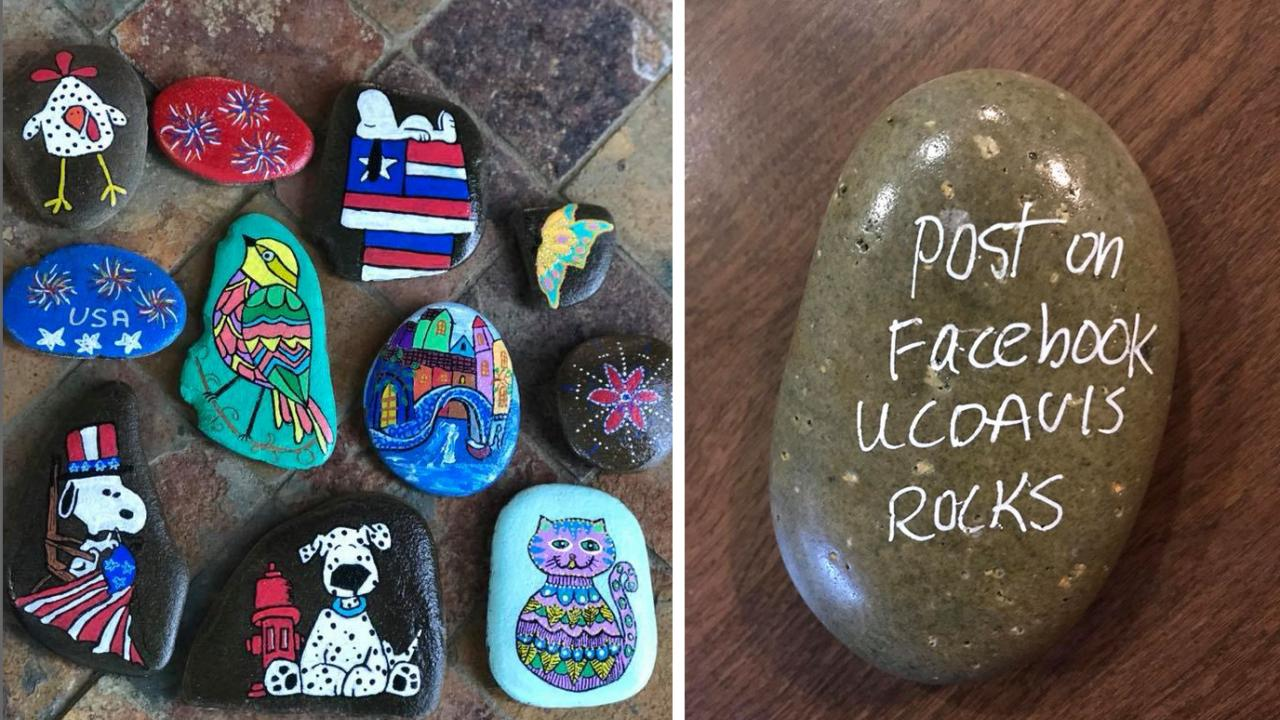 Side by side photos: one with 11 rocks painted with chicken, bird, Snoopy, Dalmation, cat, castle and other designs. Second image shows back of a rock with message: Post on Facebook UC Davis Rocks