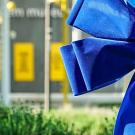 Blue ribbons at UC Davis in May indicate areas where philanthropic gifts have made a differnece