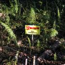 Photo of sign in jungle reading in Spanish: Danger, contaminated area