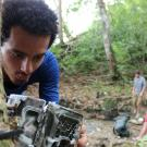 Photo of researcher looking at device attached to a tree.