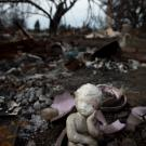 Darcy Padilla's photos of California wildfire devastation part of her photographic story on memory